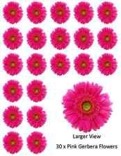 Pink Gerbera Flower x30 Cupcake Toppers Edible Wafer Paper BUY 2 GET 3RD FREE!