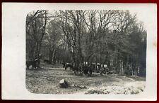cpa  guerre . carte-photo Allemande 1915 . Guerre 1914-1918