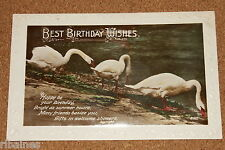 Vintage Postcard: Birthday Wishes Greetings, Swans