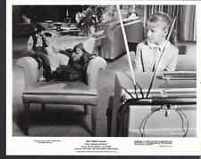 Karen Dotrice in The Gnome-Mobile 1967 original movie photo 19395