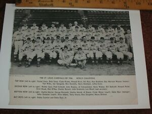 1946 ST. Louis Cardinals World Champions Team Photo Clipping ~Boston on back
