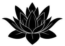Lotus Flower Vinyl Decal, Bumper Sticker, Jdm Decal for Car, Windows, Outdoors