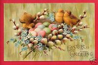 EASTER GREETING CHICKS COLORED EGGS NEST PUSSY WILLOW FORGET ME NOTS   POSTCARD