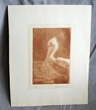 Pelican Print or Etching Limited Edition by Pam Helms?