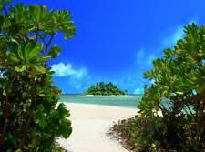 VLIES Fototapete-PALM BEACH-(411V)-350x260cm-7 Bahnen 50x260-Insel Palmen Strand