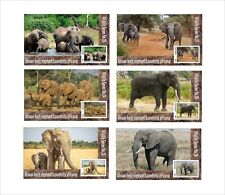 2019  AFRICAN BUSH ELEPHANT 6 SOUVENIR SHEETS MNH UNPERFORATED WILDLIFE AFRICA