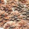 1kg PACK OF AUSTRIACA PINE TREE CONES - CHRISTMAS FESTIVE DECORATION - APPROX 50