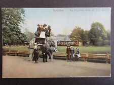 London THE ZOO An Elephant Ride showing Keeper c1905 by E.F.A. Series 521