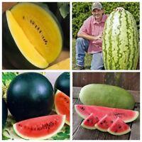 Seeds Rare Watermelon Yanosik Astrakhan Krasen Black Diamant Charleston Gray