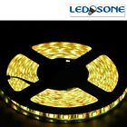 5m/10m LED Strip light DC12V 300/600 LED IP65 Waterproof Flexible LED light A+++