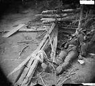 Dead Confederate at Spotsylvania Court House 1864 - 8x10 Civil War Photo