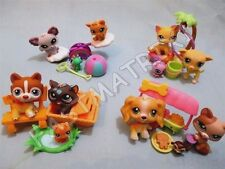 Littlest Pet Shop Lot 6 Random Pcs Cat Dog Baby plus 3 Accessories and Gift Bags