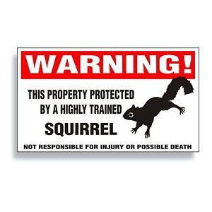 Warning DECAL trained SQUIRREL tree ground flying black gray bumper sticker BK