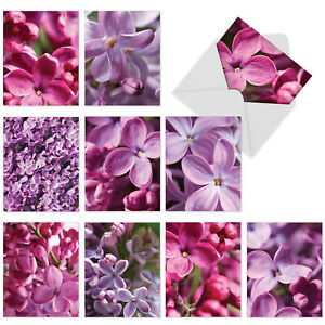10  All Occasion Blank Cards Assortment - THE COLOR PURPLE M6032