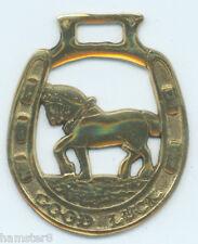 GOOD LUCK SHIRE      Horse brass  (204)