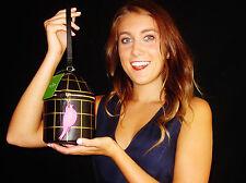 NWT Kate Spade BIRDCAGE CLUTCH BAG Wristlet Bird Cage Jade Drive Hello Shanghai