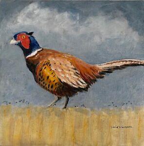 Cock Pheasant. David Laurence original Acrylic on Canvas Board 8 x 8 ins