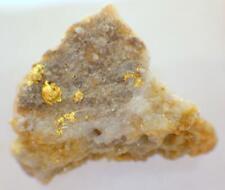 Quartz w Gold Alaskan Natural Placer 4.927 GRAMS Caribou Creek Hi Pure Specimen