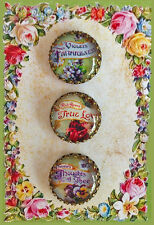 """Set of 3 LANGUAGE OF FLOWERS Filigree 7/8"""" GLASS DOME BUTTONS VICTORIAN FLORAL"""