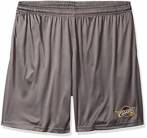 Cleveland Cavaliers NBA Men's Gray Team Logo Athletic Performance Shorts: XL-3XL