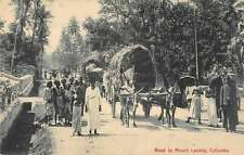 Colombo Sri Lanka ox pulled carts people road to Mount Lavinia antique pc Z23999