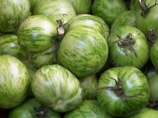 tomato, GREEN ZEBRA, HEIRLOOM 50 seeds! GroCo