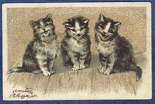 CPA DOS NON DIVISE  - CHAT - 3 PETITS CHATONS