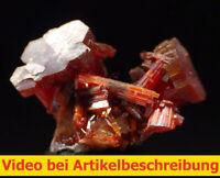 7947 Vanadinit ca 1,5*1*2 cm Mibladen Marokko morocco  MOVIE