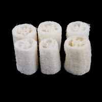 6Pcs Natural Loofah Luffa Loofa Spa Bath Sponge Kitchen Clean Scrubber Exotic✔QA