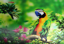 3D Lenticular Poster - Blue Beak PARROT on tree branch - 12x16 Print -Wild Birds
