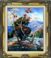 Framed Quality Hand Painted Oil Painting, Impression Foothill, 20x24in