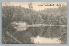 Haydens Pond HOLLIS NH Hillsborough County—Rare Antique AK Lewis Milford 1910s