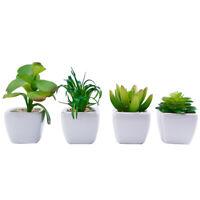 4stk. Künstlich Sukkulenten Pflanzen mit Weiß Töpfen Garten Büro Tischdeko