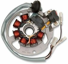 Polaris ETON Apache Quadzilla Ram 50 90 100 Stator Assembly