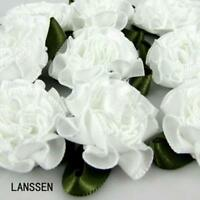 "30pcs Handmade 1"" White Satin Carnation Flowers Satin leaf ribbon Appliques"