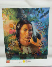Clancy Cherry Problematic Reptile Painting Igi Paint Art 11530 Native American