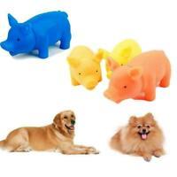 Puppy Supplies Kauen Quietschen Quietschgummi für Hundespielzeug Sound absp W1U2