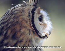 School Classroom Student Motivational Poster Art Owl Teacher Educational MVP494