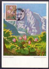 1-8.GREECE,1958 FLOWERS,SC.631 CYCLAMEN,VERY NICE FDC MAXICARD