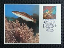 FRANCE MK 1978 TROPICAL FISH CORAL PISCES FISCHE CARTE MAXIMUM CARD MC CM c3224