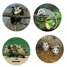 Possum Magnets-A: 4 Possum/Opossum Magnets 4 your home or collection-Great Gift