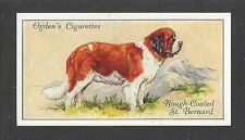 1936 UK Dog Art Body Portrait Ogdens Cigarette Card Rough Coat SAINT ST. BERNARD