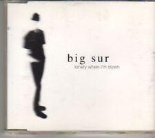 (BX299) Big Sur, Lonely When I'm Down - 1999 CD