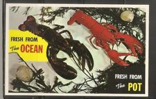 USA. Cape Ann, Massachusetts. Vintage postcard