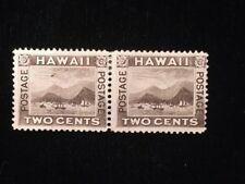 HAWAII: UNUSED #75 PAIR NO GUM (LEFT STAMP IS FLYING GOOSE VARIETY) CV $525+