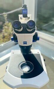 ZEISS Stemi 2000-C W-PI 10X/23 / Mikroskopkamera Axiocam / Kamera-Adapter 60N-C