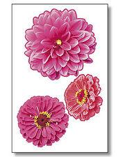 Zinnias 6 Zinnia Flowers Wallies Large Bloom Pink Fancy Flower Decals Stickers