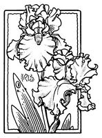 Unmounted Rubber Stamps, Flower Stamps, Lg. Iris Frame, Irises, Spring  Flowers