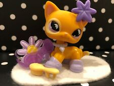 AUTHENTIC ORIGINAL LITTLEST PET SHOP # 855 MOON EYES  SHORTHAIR CAT