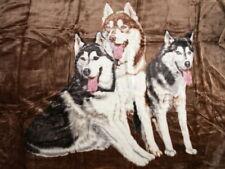 Tagesdecke Kuscheldecke Bettdecke Überwurf Decke Plaid mit Motiv 3 Husky braun